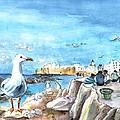 Seagull In Essaouira In Morocco by Miki De Goodaboom