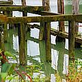 Seagull Nesting Dock by Mark Tsemak