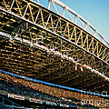 Seahawks Stadium 3 by Tracy Knauer