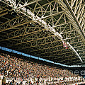 Seahawks Stadium 4 by Tracy Knauer