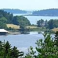 Seal Harbor Maine by Elizabeth Dow