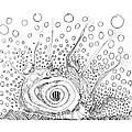Sealife Smoooch by Regina Valluzzi
