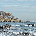 Seapoint Beach  by Marcia Lee Jones