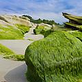 Seascape by Aged Pixel