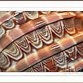 Seashell Abstract 2 by Kaye Menner