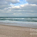 Seashore by Carol  Bradley
