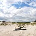 Seaside Driftwood And Dunes by Pamela Hyde Wilson