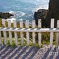 Seaside Fence by Carol Groenen