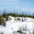 Seaside Fenceline by David Morefield