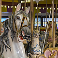 Seaside Heights Casino Carousel  by Susan Candelario