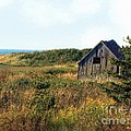 Seaside Shed - September by RC DeWinter