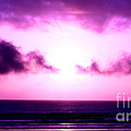 Seaside Sunset by Nick Gustafson