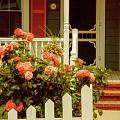Seaside Victorian Cottage by Debra Fedchin
