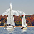 Seasonal Sailing by Susan Leggett