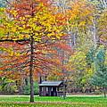 Seasonal Sensation by Frozen in Time Fine Art Photography