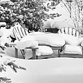 Seasonal Yard Furniture by Trever Miller