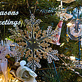 Seasons Greetings Card 2 by Joanne Smoley