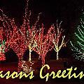 Seasons Greetings by Darren Robinson