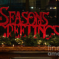 Seasons Greetings In Red by Imagery by Charly