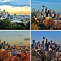 Seasons Of Seattle White by Benjamin Yeager