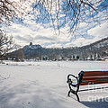 Seat With A View Winter by Kari Yearous