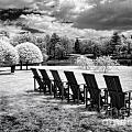 Seating For Six by Claudia Kuhn