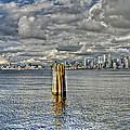 Seattle Skyline And Cityscape by SC Heffner