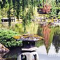 Seattle Tea Garden Reflections by Bob Phillips