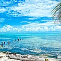 Secluded Beach On Caye Caulker Belize by Mary Stuart