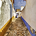 Secluded Cobblestone Street In The Medieval Village Of Obidos IIi by David Letts