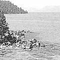 Secret Cove Lake Tahoe by Frank Wilson