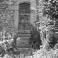Secret Door by Asa Jones