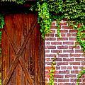 Secret Door by Jeff Lowe
