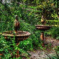 Secret Garden Birdbath by David Morefield