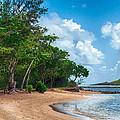 Secret Island Beach by Dan McManus