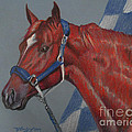 Secretariat by Nancy J Bailey