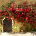 The Bougainvillea's Of Sedona by Colleen Taylor