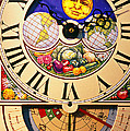 Seed Planting Clock by Garry Gay