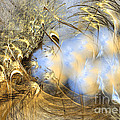 Seeds Of Peace -abstract Art by Sipo Liimatainen