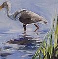 Seeking Fish by Mary Hubley