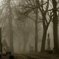 A Graveyard Seeped In Fog by Gothicrow Images