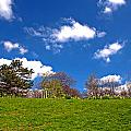 Sefton Park Liverpool In Spring Time by Ken Biggs