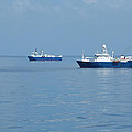Seismic Fleet by Bradford Martin