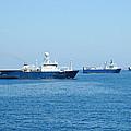 Seismic Survey Fleet by Bradford Martin