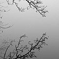 Self-reflection by Luke Moore