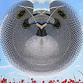 Selfridges Birmingham Bull Ring by Neil Finnemore