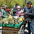 Selling Fresh Pineapple On Street In Lhasa-tibet    by Ruth Hager