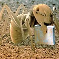 Sem Of Ant Holding A Microchip by Power And Syred