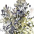 Senecio And Other Plants by Claudia Hutchins-Puechavy
