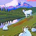 Sentinel Denali by Susan McNally